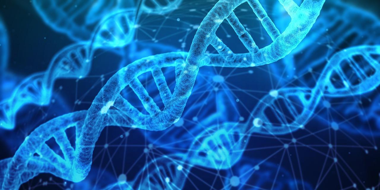 כל הסיבות לבצע בדיקות גנטיות לפני שמתחתנים